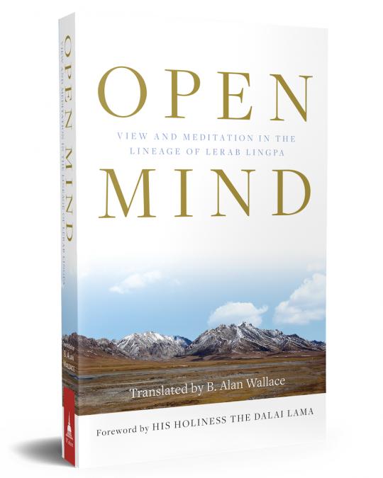 """Buchbesprechung: B. Allan Wallace """"Open Mind"""""""